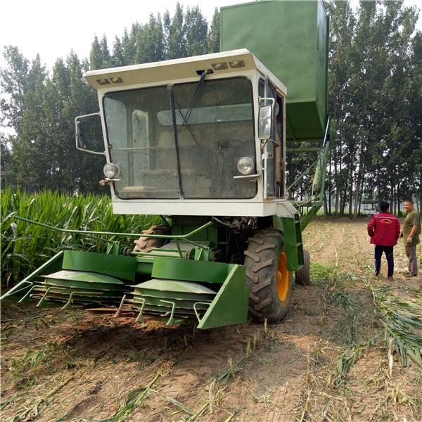 玉米qing储机